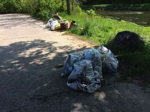 Baraboo River Clean up